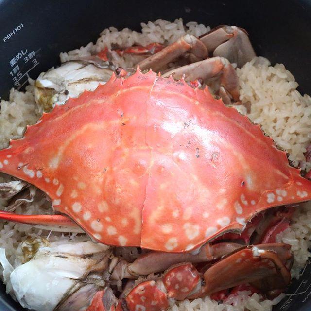 おはようございます!.今年は、凄い猛暑だった影響で、渡り蟹が大漁なんだそうです。.渡り蟹ごはん。簡単で凄く美味しいですよ〜!.冬に美味しい蟹ですが、寒性なので体を冷やす食材になりますから、ご飯を炊く時には、生姜を一緒に炊いたり、温性の汁物などと一緒に召し上がって下さいね!.蟹性味/寒、鹹帰経/肝、腎補陰、清熱、理血、利湿、消腫、解毒.#healthyfood #medicinalfood#fruits#健康 #ヘルシーフード#手作り発酵ジュース #発酵 #発酵フルーツ #発酵リビングフード#薬膳 #中医 #渡り蟹 #秋の薬膳#彼ごはん #スムージー#ドードーの空@dodonosorakitchenhttps://dodonosora.jp/