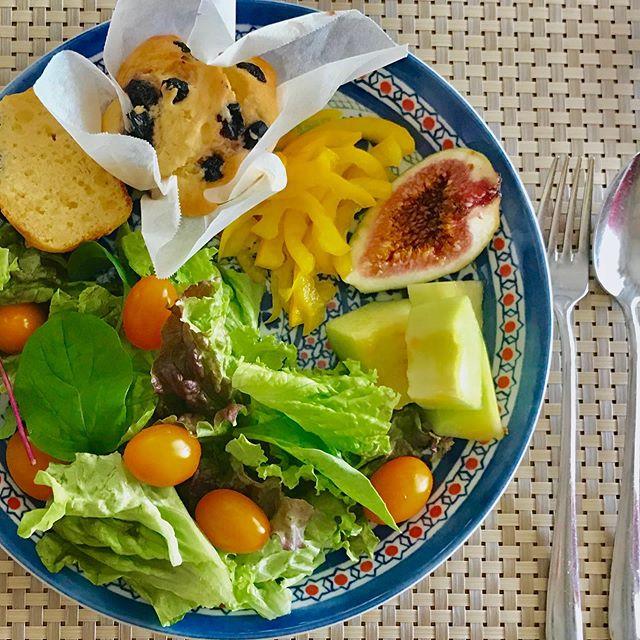 おはようございます!.すっかり夏の陽気で、ウキウキしますね。昨日は、久し振りの発酵ジュースレッスン。無農薬無肥料のキウイを使いました!.本来、キウイは冬の果物ですが、ビタミンCたっぷりで、春の不調も助けてくれる効果が沢山あるので、この時期にはお勧めの食材。.また、薬膳的には食欲不振や消化不良を改善したり、梅雨の多湿による不調にも働きますから、今のうちに発酵ジュースを作って梅雨にしっかり備えておきましょう。.昨日から気温が高いので、もう泡がプクプク、発酵が進んでます。この感じだと1週間くらいで、発酵完了しそうです!.性味/酸、寒帰経 /腎、胃解熱止渇、煩熱、口渇、黄疸、降逆和胃 食欲不振、消化不良、便秘.https://cookpad.do/owners/10608#healthyfood#medicinalfood#fruits#健康 #ヘルシーフード#手作り発酵ジュース #発酵 #発酵フルーツ #発酵リビングフード#薬膳 #中医 #食欲不振#キウイ#お弁当#ドードーの空@dodonosorakitchenhttps://dodonosora.jp/