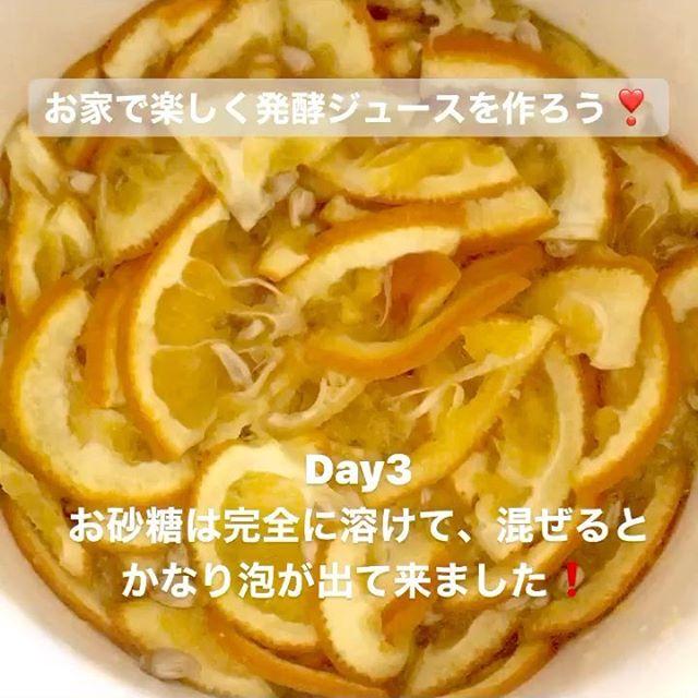 こんにちは!.#ステイホームがんばろう#発酵ジュース.手作り発酵ジュースのDay3今日は朝から気温が高くて窓全開です。.お砂糖は完全に溶けて、混ぜるとかなり泡が出て来ました。気温が高いせいなのか?発酵が早い気がします。.#healthyfood#medicinalfood#fruits#miso#日本を元気にするご飯#ヘルシーフード#手作り発酵ジュース #発酵 #発酵フルーツ #発酵リビングフード#温活 #イライラ #ストレス緩和#薬膳 #中医 #手作り味噌体験#発酵麹調味料 #発酵麹調味料マイスターhttps://dodonosora.jp/https://chuigaku-cocokara.jp/magazine/cook/