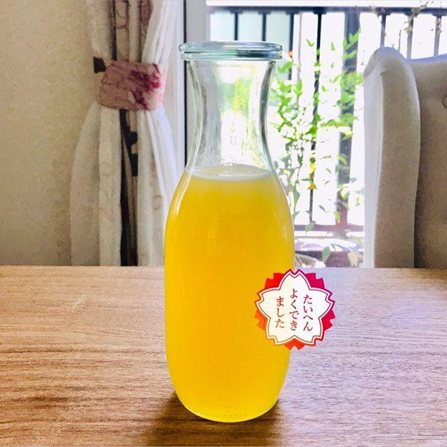 おはようございます!.#ステイホームがんばろう#発酵ジュース.出来上がった発酵ジュースは乳酸菌が一杯。1日大さじ1-2杯を薄めて飲むと#腸活 #腸内環境 を整えるのに役立ちます。.昨日も情報番組で感染症の専門家の先生が、発酵食品が腸内環境を整えて、免疫システムを整えるという話をしてました。#北村義浩教授 .先生自身も発酵食品は、欠かさず摂取してるそうです。.沢山の実験でウイルスの正体を知り、見てきて人が言う訳ですから、私達も日々の生活に発酵食品を積極的に取り入れて行きましょう!.納豆、甘酒、味噌、日本には発酵食品が多いのは嬉しいですね.#healthyfood#medicinalfood#fruits#miso#日本を元気にするご飯#ヘルシーフード#手作り発酵ジュース #発酵食品#発酵フルーツ#腸活#温活 #イライラ #ストレス緩和#薬膳 #中医 #手作り味噌体験#発酵麹調味料 #発酵麹調味料マイスター#くらし薬膳プランナーhttps://dodonosora.jp/https://chuigaku-cocokara.jp/magazine/cook/