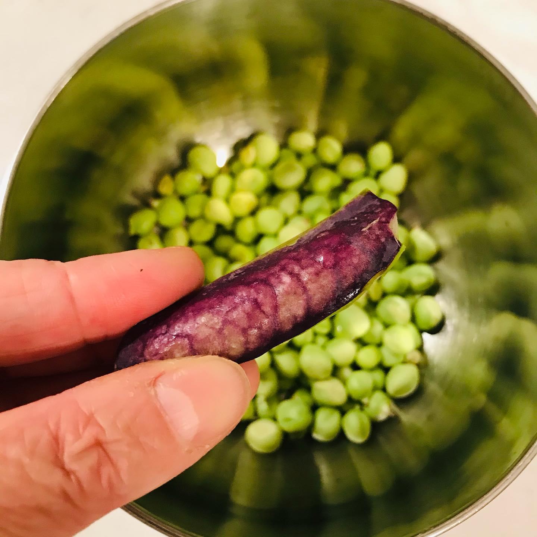 こんにちは!.先日届いた野菜セットの中にあった、ツタンカーメングリーンピースで豆ごはん。.紫色のサヤの豆は、なんでもツタンカーメンの墓の中から出てきた豆が由来の品種なんだそう〜.中身は、何色なのかと思いながら開いてみると、豆は普通の緑色。炊き上がりも普通だったけど、豆のホクホクさが抜群です!.えんどう豆は利水の働きがあるの浮腫みやすい、ジメジメ季節にはオススメの食材です。.えんどう性味/平性、甘帰経/脾、胃補中、益気、利水、通乳、疲労、むくみ.#healthyfood#medicinalfood#fruits #miso#日本を元気にするご飯#ヘルシーフード#手作り発酵ジュース #発酵 #発酵フルーツ #発酵リビングフード#美肌薬膳 #浮腫み解消 #薬膳 #中医薬膳師#手作り味噌体験#発酵麹調味料#発酵麹調味料マイスター#くらし薬膳 #くらし薬膳美容アドバイザーhttps://www.kurashi-yakuzen.net/